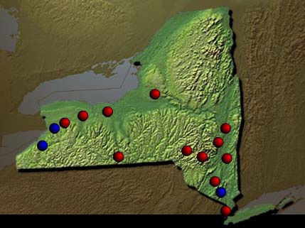 Development of New York State Institutions 1900 - 1950