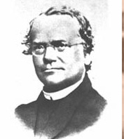 1866 Gregor Mendel published The Theory of Heredity